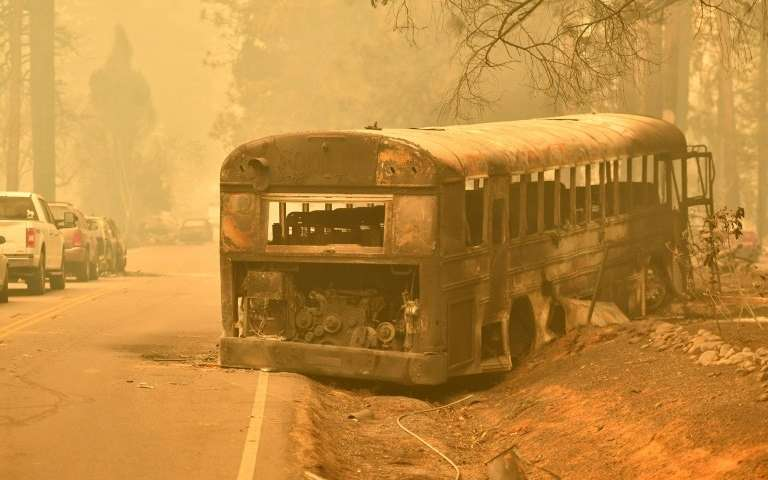 The abandoned burnt school bus is a road to the paradise