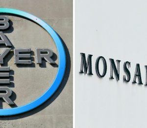 Bayer confirms forecasts as Monsanto's integration grinds on