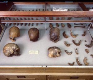 Ice Age tribes secrets in DNA in the world's oldest natural mummy – ScienceDaily