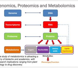 Advances in microbial genomics and medical research
