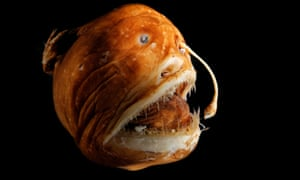 Deep sea anglerfish places bioluminescent bacteria tip for long appendage.