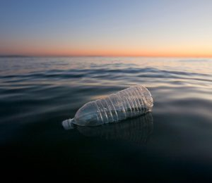 On the problem of marine plastics discussed at the Dublin conference