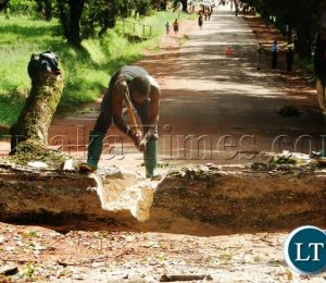 Zambians are urged to become more interested in their surroundings