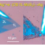 Limit / disable photocatalytic action between Single and Bilayer MoS2
