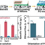 Scalable Ti3C2Tx MXene interlayered forward Osmosis Membranes for water purification and recovery of organic solvents